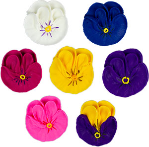Pansies - Assorted